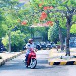 Luật thi bằng lái xe máy mới nhất theo quy định của Bộ 12